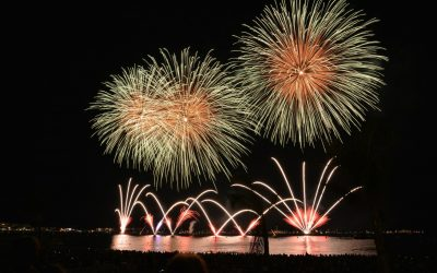 Bestyrelsen ønsker Godt Nytår!