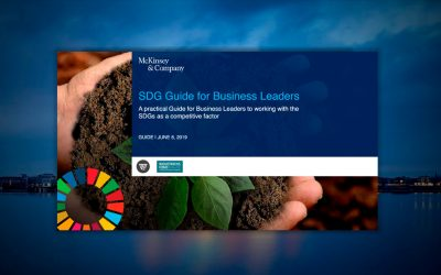 Download McKinsey's SDG Guide for Business Leaders